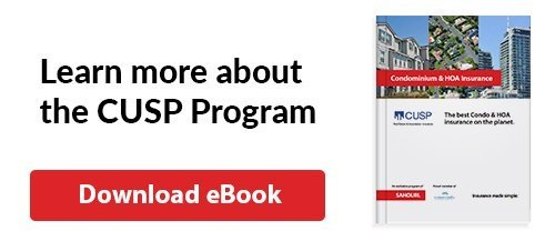 Learn about the cusp program