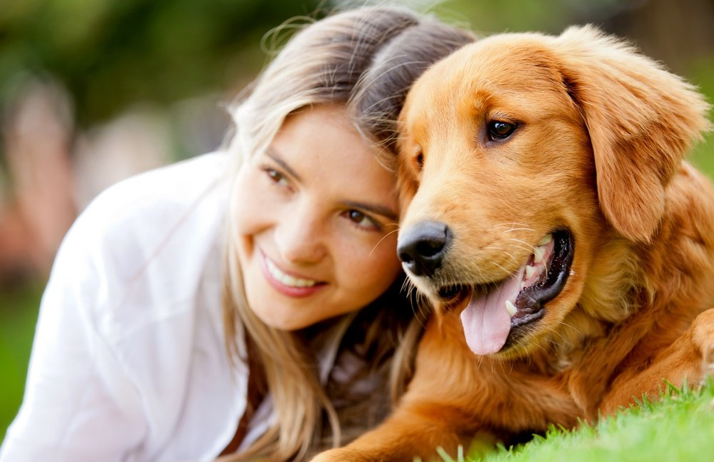 Which Dog Breeds Affect Your Homeowner's Insurance?